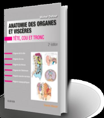 Image de Anatomie des organes et viscères